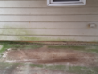 Mildew growth on a home & patio in Fayetteville, Ga. Pressure washing with proper detergents will clean this effectively and results will last longer.