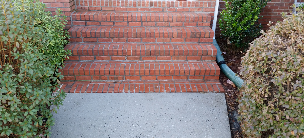 Proper cleaning methods for brick mildew removal